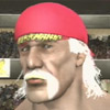 PS2 - Hollywood Hulk Hogan - last post by Nike The Bike