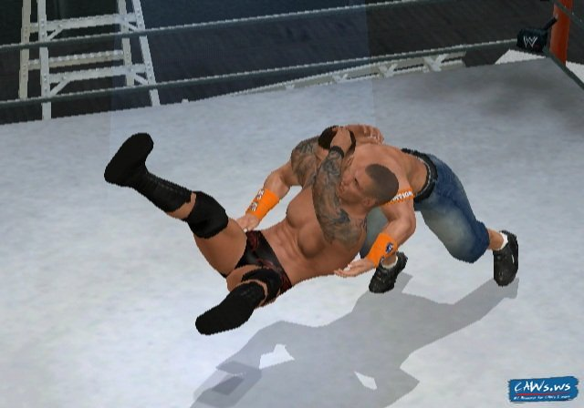 ortonfinisher1