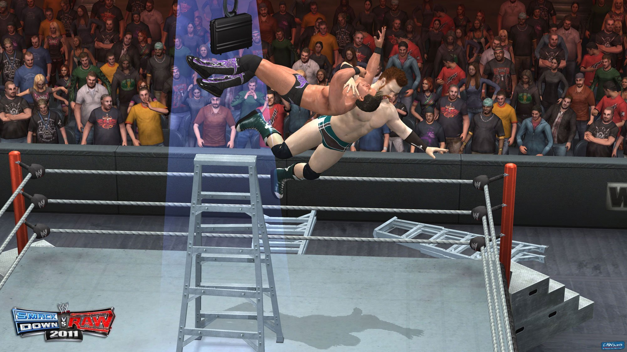 svr2011_sheamusladder