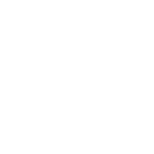 enforcer.png.67fd1a91bbeeecaafe972b53d4cce0d7.png