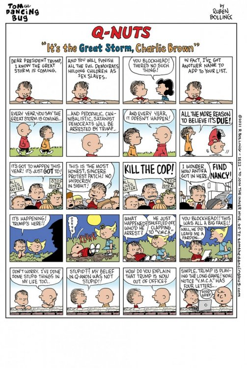 1522cbCOMIC-great-storm-charlie-brown.thumb.jpg.f3e69d2ef456d2876945402d0365a26c.jpg