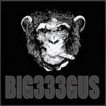 Big333Gus's Photo