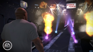 ea_sports_mma_ng_entrances_1_bmp_jpgcopy