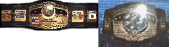 World Title Belt In-game Title Name Nwa World